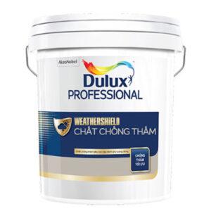 chat chong tham dulux professional weathershield